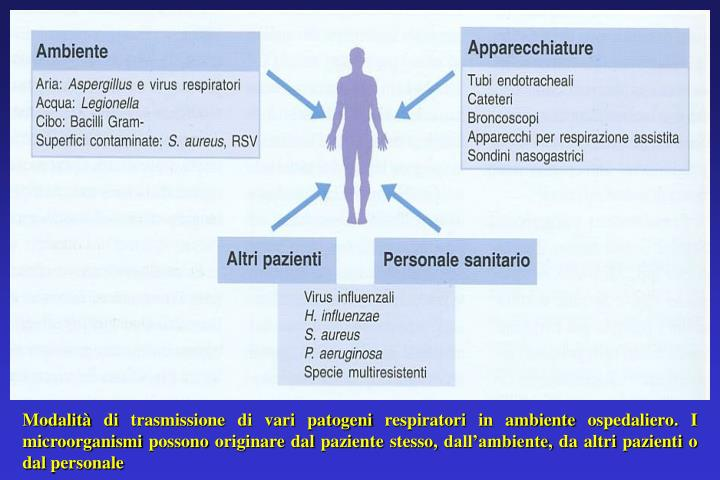 Modalità di trasmissione di vari patogeni respiratori in ambiente ospedaliero. I microorganismi possono originare dal paziente stesso, dall'ambiente, da altri pazienti o dal personale