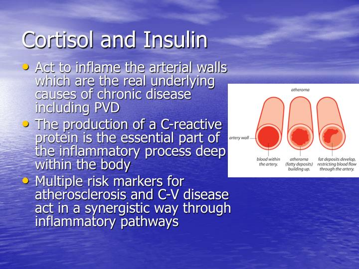 Cortisol and Insulin