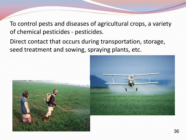 To control pests and diseases of agricultural crops, a variety of chemical pesticides - pesticides.