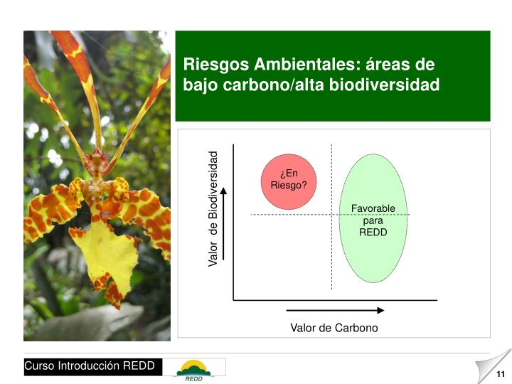 Riesgos Ambientales: áreas de bajo carbono/alta biodiversidad