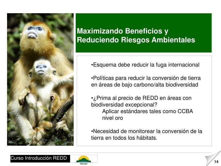 Maximizando Beneficios y Reduciendo Riesgos Ambientales