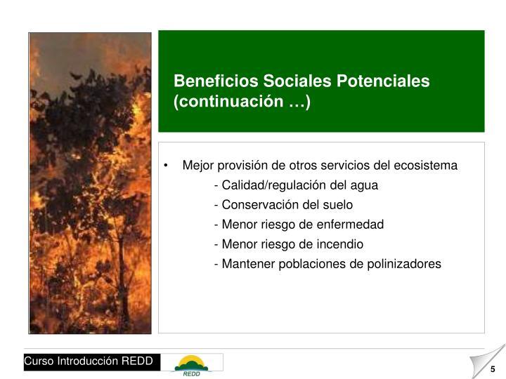 Beneficios Sociales Potenciales (continuación …)