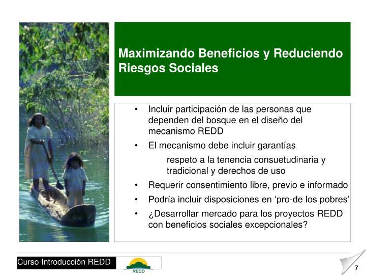 Maximizando Beneficios y Reduciendo Riesgos Sociales
