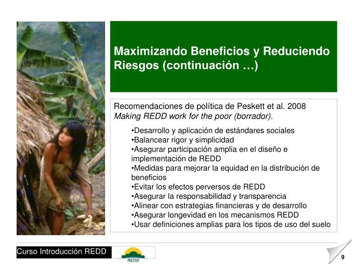 Maximizando Beneficios y Reduciendo Riesgos (continuación …)