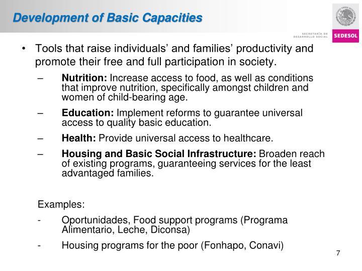Development of Basic Capacities