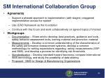 sm international collaboration group