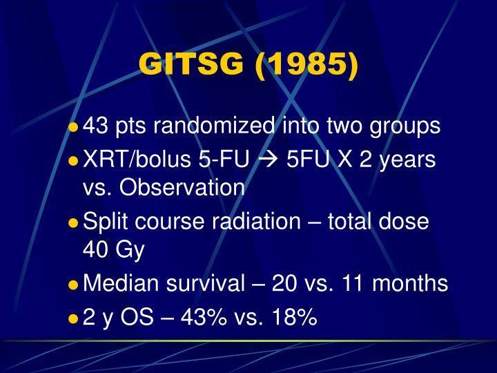 GITSG (1985)