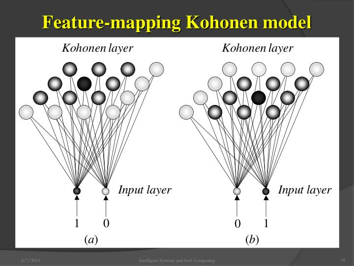 Feature-mapping Kohonen model