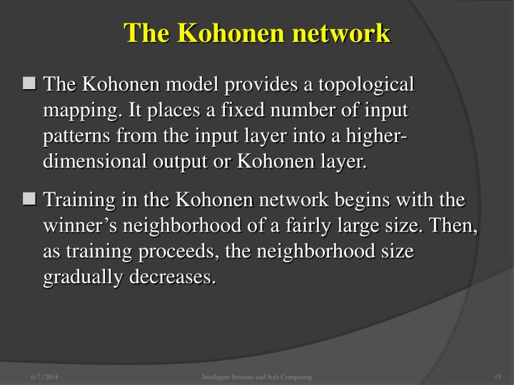 The Kohonen network