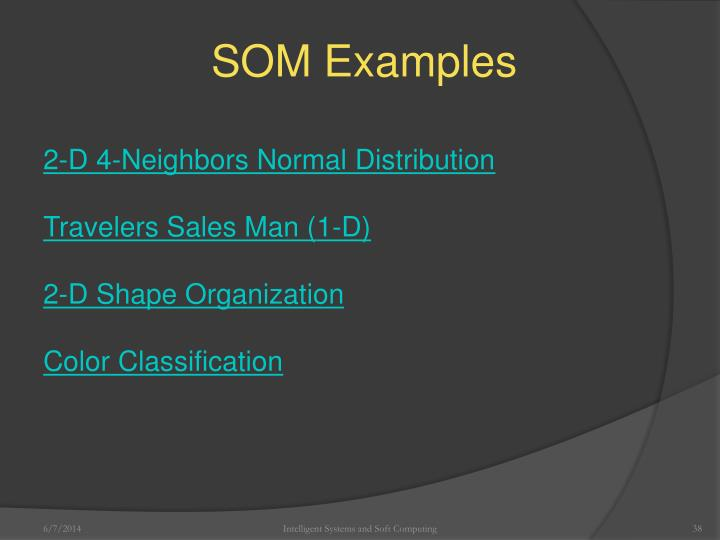 SOM Examples