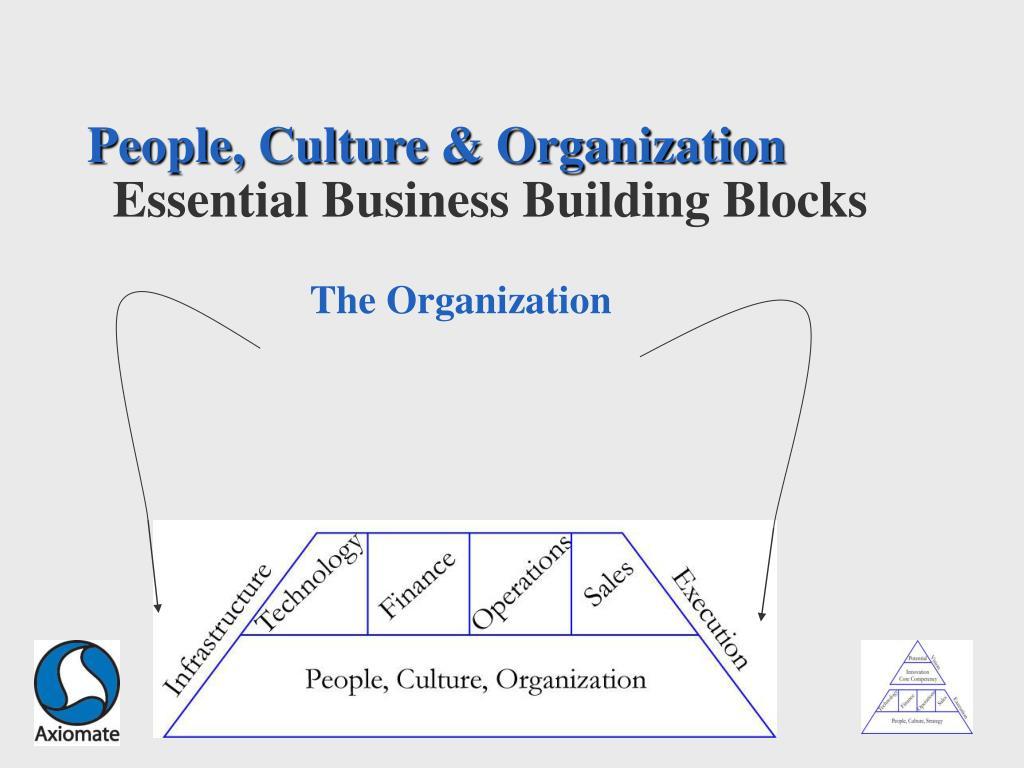 People, Culture & Organization