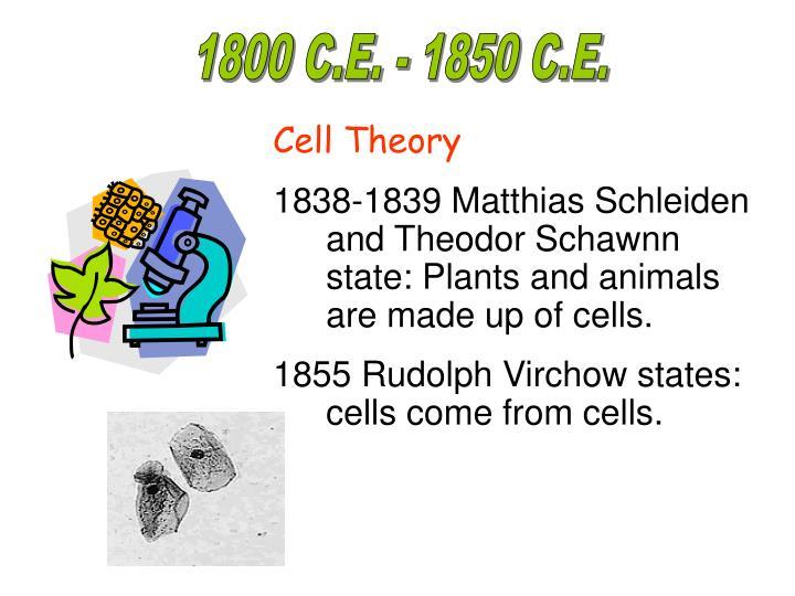 1800 C.E. - 1850 C.E.