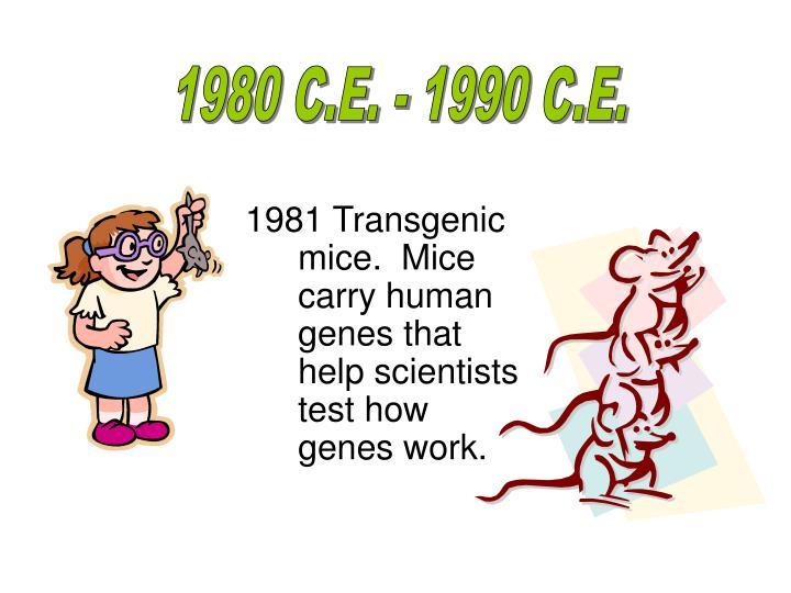 1980 C.E. - 1990 C.E.
