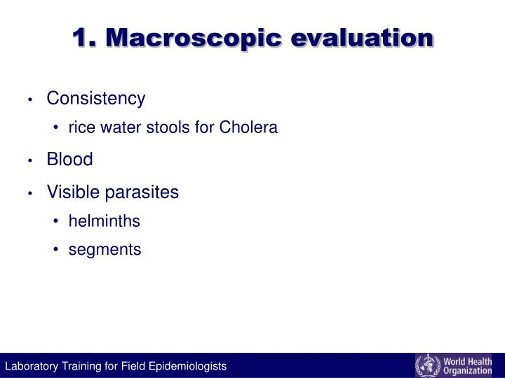 1. Macroscopic evaluation