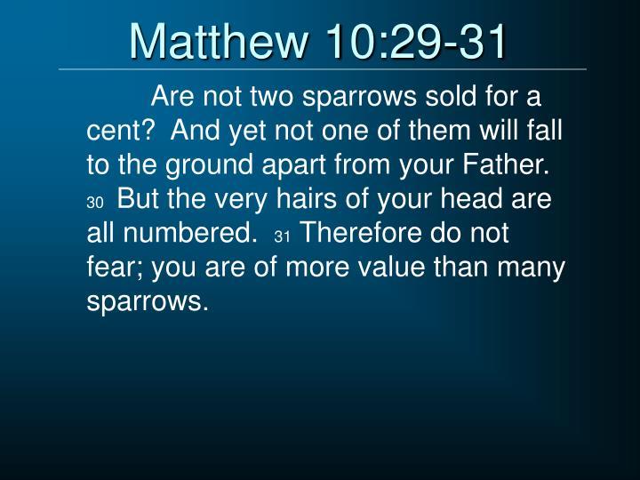 Matthew 10:29-31