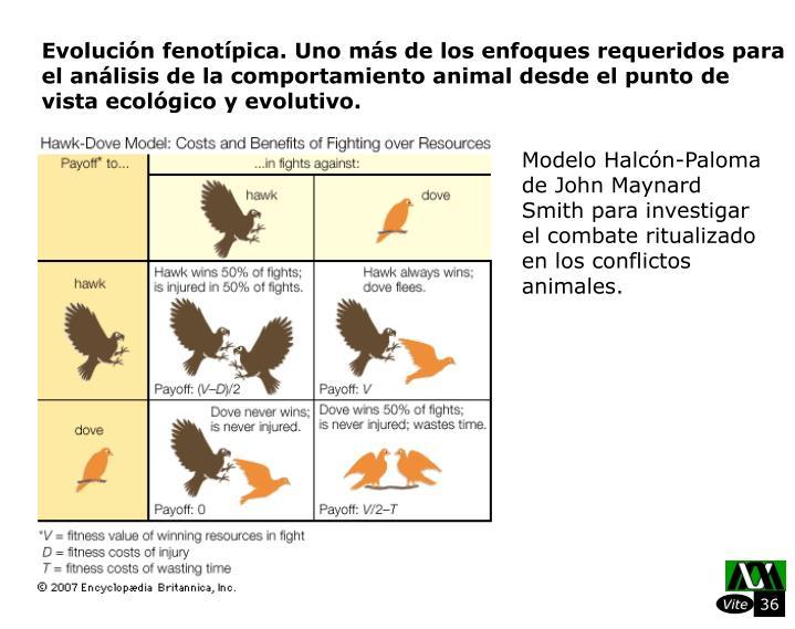 Evolucin fenotpica. Uno ms de los enfoques requeridos para el anlisis de la comportamiento animal desde el punto de vista ecolgico y evolutivo.