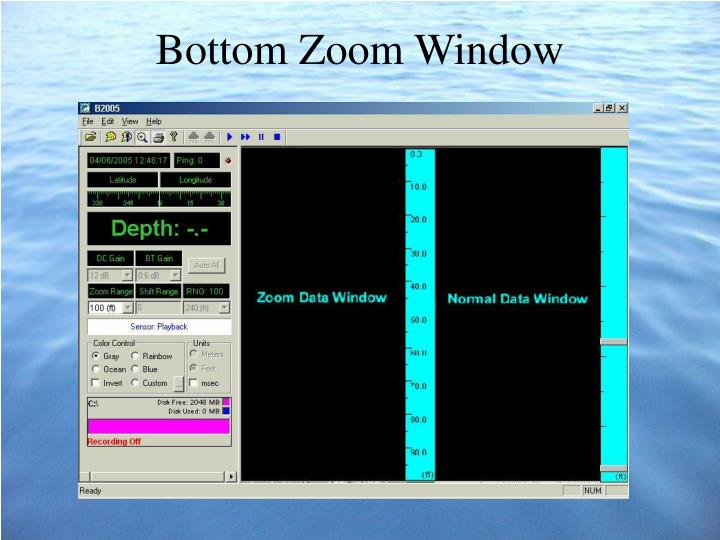 Bottom Zoom Window