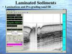 laminated sediments
