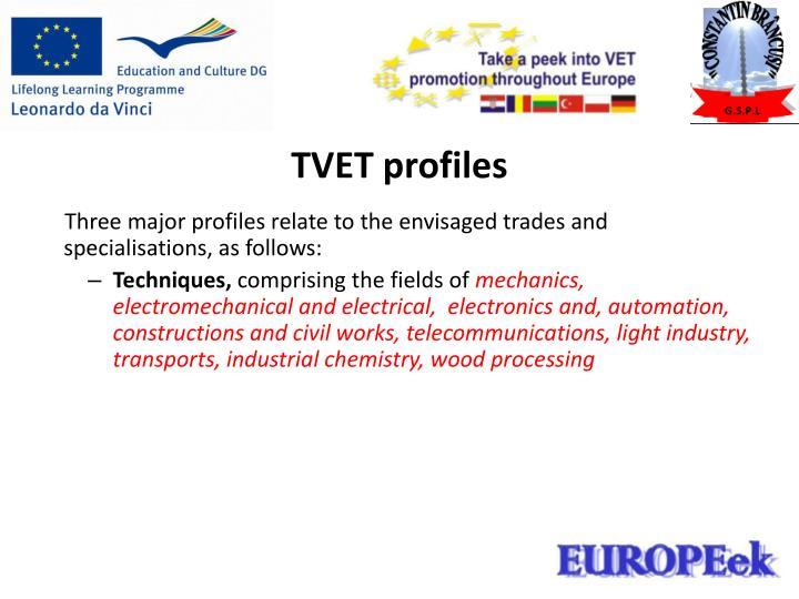TVET profiles