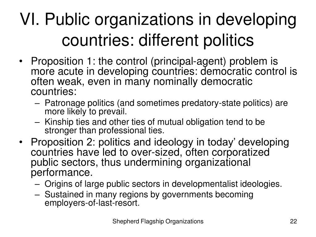 VI. Public organizations in developing countries: different politics