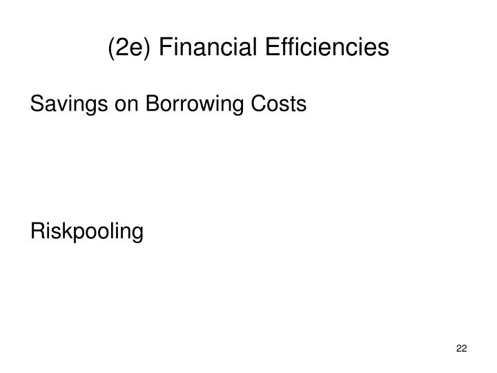 (2e) Financial Efficiencies