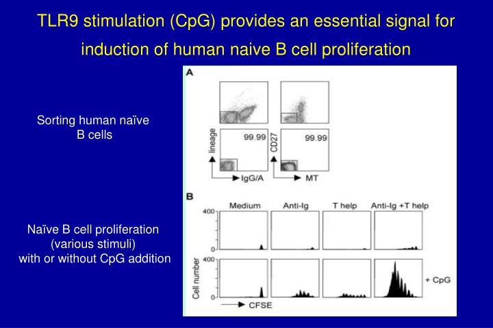 TLR9 stimulation (CpG) provides an essential signal for