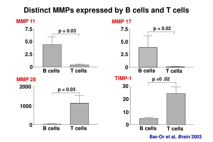 Distinct MMPs expressed by B cells and T cells