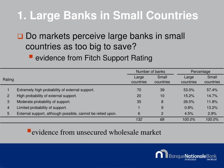 1. Large Banks in Small Countries
