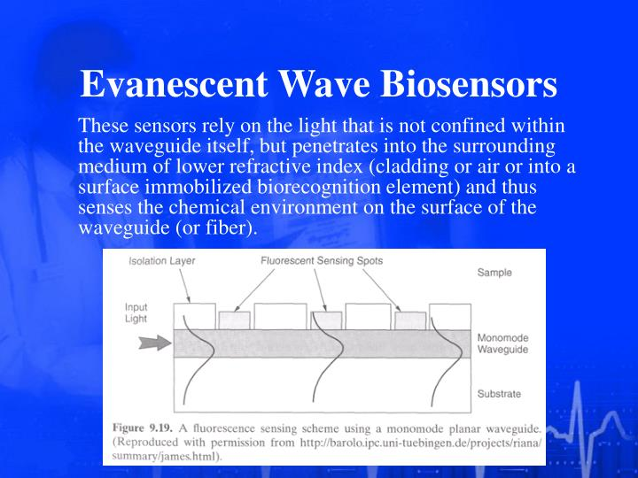 Evanescent Wave Biosensors
