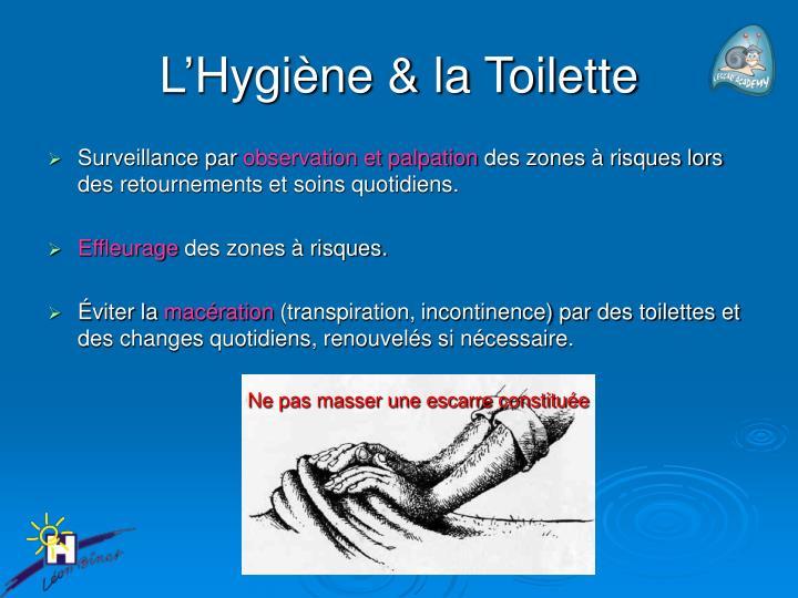 L'Hygiène & la Toilette
