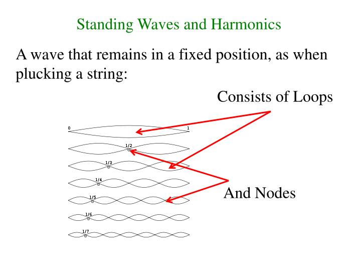 Standing Waves and Harmonics