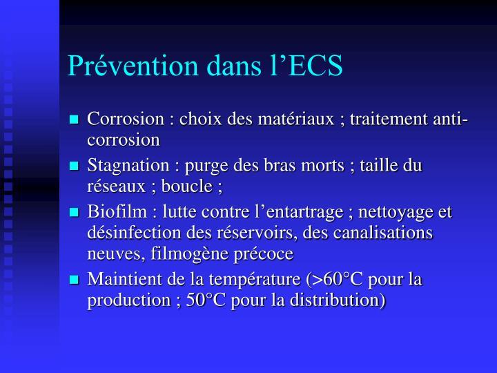Prévention dans l'ECS