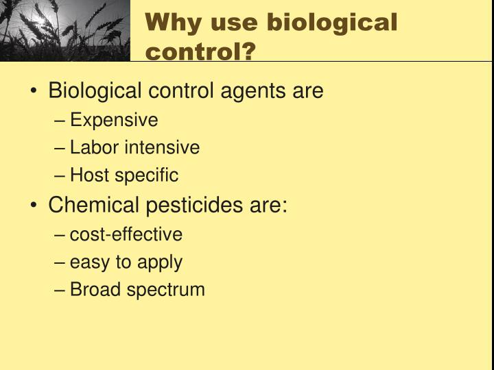 Why use biological control?
