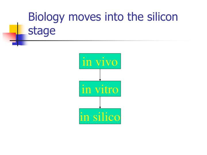 Biology moves into the silicon stage