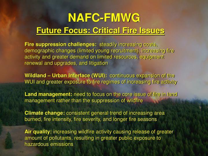 NAFC-FMWG