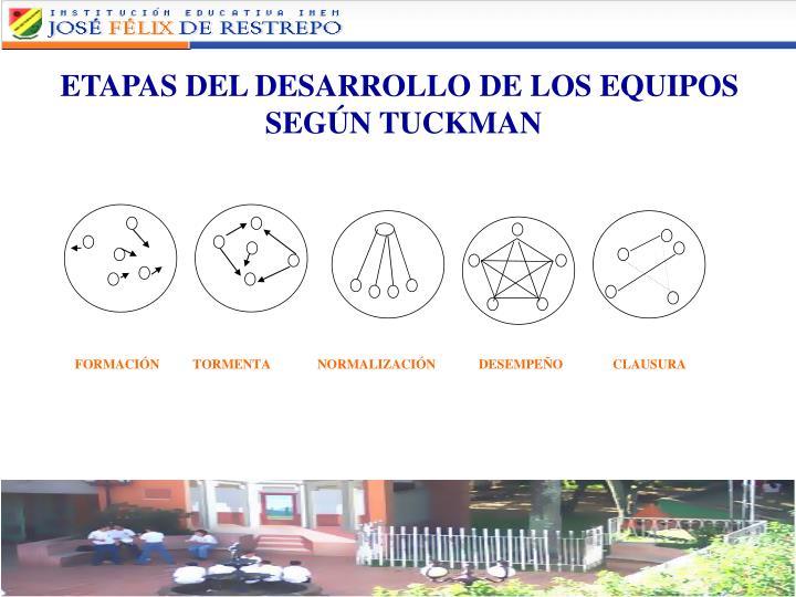 ETAPAS DEL DESARROLLO DE LOS EQUIPOS