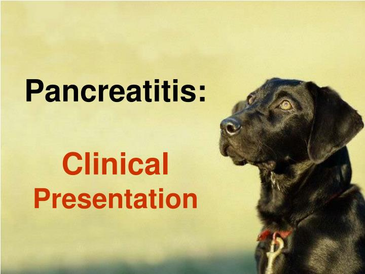 Pancreatitis: