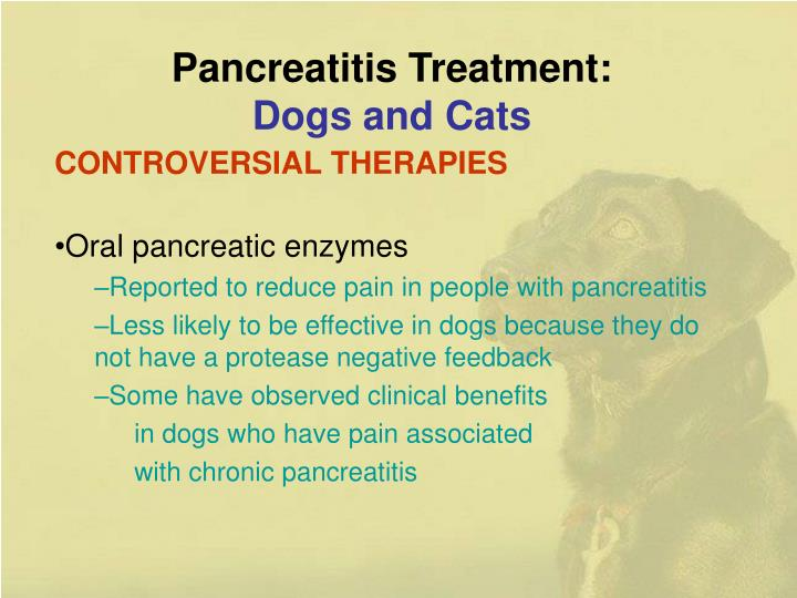 Pancreatitis Treatment: