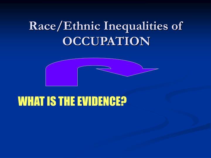 Ethnic Inequalities 43