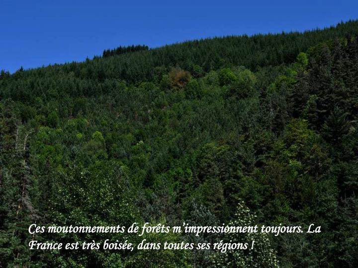 Ces moutonnements de forêts m'impressionnent toujours. La France est très boisée, dans toutes ses régions !