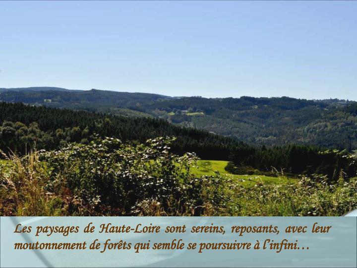 Les paysages de Haute-Loire sont sereins, reposants, avec leur moutonnement de forêts qui semble se poursuivre à l'infini…