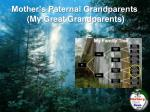 mother s paternal grandparents my great grandparents