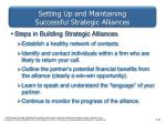 setting up and maintaining successful strategic alliances