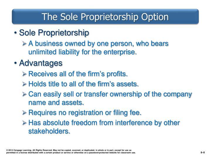The Sole Proprietorship Option