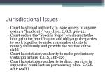 jurisdictional issues1