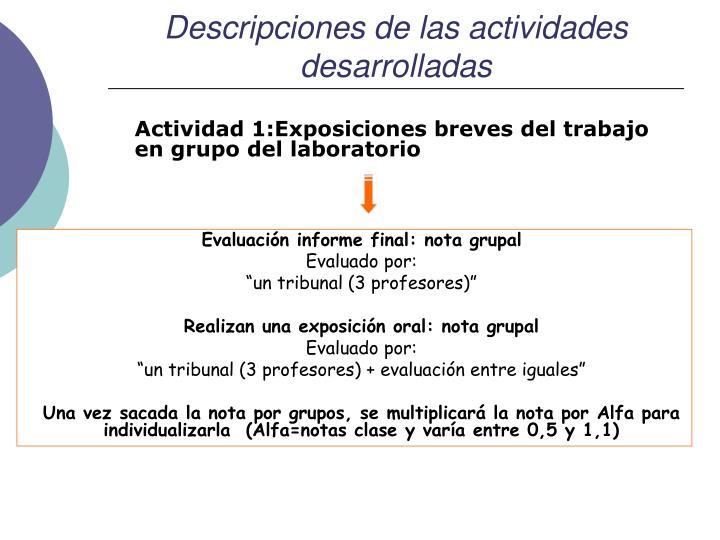 Descripciones de las actividades desarrolladas