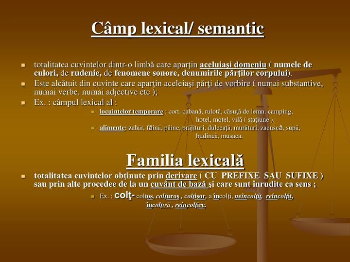 Câmp lexical/ semantic
