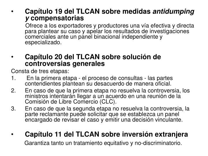 Capítulo 19 del TLCAN sobre medidas