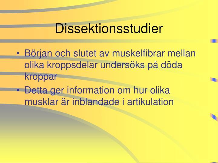 Dissektionsstudier