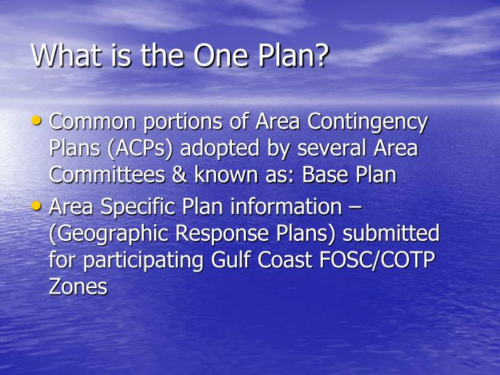 What is the One Plan?